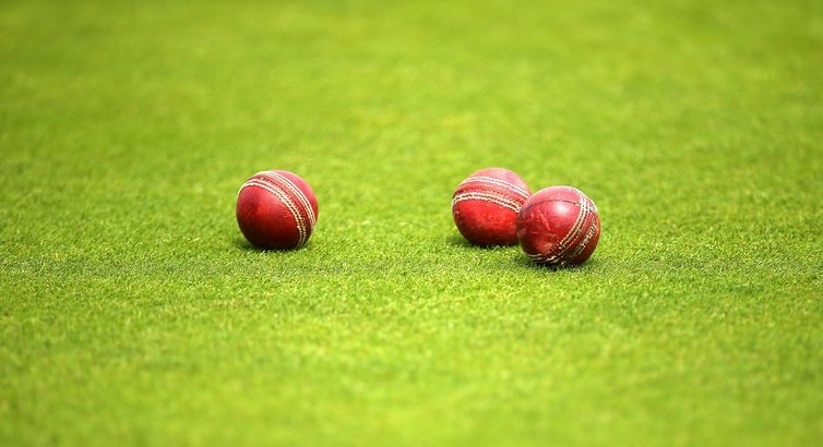 Cricket on Return-to-Play pathway with expanded training protocols